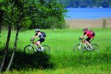 Mountainbiker im Blinklingmoos